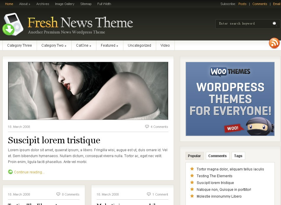 wordpress简约主题 Woothemes fresh news