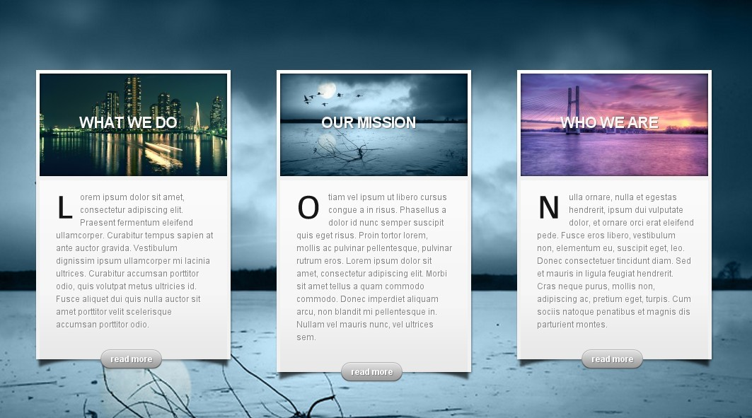 ElegantThemes wordpress最新主题-InStyle